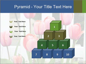 0000080891 PowerPoint Template - Slide 31