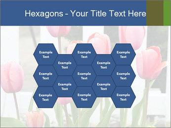 0000080891 PowerPoint Template - Slide 44