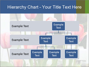 0000080891 PowerPoint Template - Slide 67