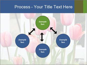 0000080891 PowerPoint Template - Slide 91