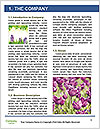 0000080891 Word Template - Page 3