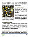 0000080891 Word Template - Page 4