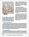 0000080892 Word Template - Page 4