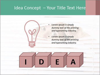 0000080903 PowerPoint Template - Slide 80
