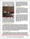 0000080904 Word Templates - Page 4