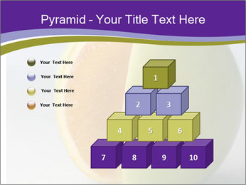 0000080905 PowerPoint Template - Slide 31