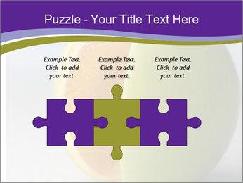 0000080905 PowerPoint Templates - Slide 42