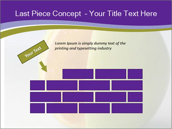 0000080905 PowerPoint Template - Slide 46