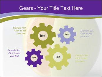 0000080905 PowerPoint Templates - Slide 47