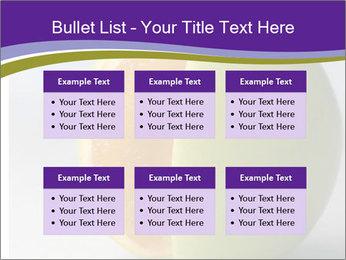 0000080905 PowerPoint Templates - Slide 56
