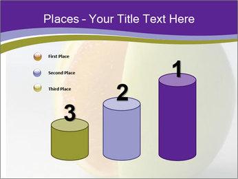 0000080905 PowerPoint Templates - Slide 65