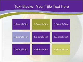 0000080905 PowerPoint Templates - Slide 68