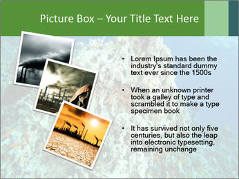 0000080907 PowerPoint Templates - Slide 17