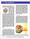0000080917 Word Template - Page 3