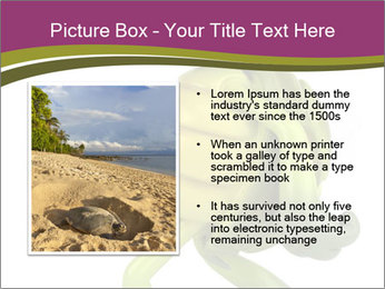 0000080922 PowerPoint Template - Slide 13