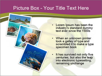 0000080922 PowerPoint Template - Slide 17