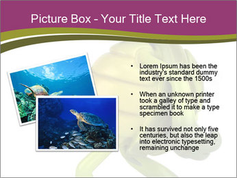 0000080922 PowerPoint Template - Slide 20
