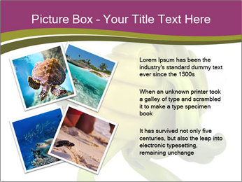 0000080922 PowerPoint Template - Slide 23