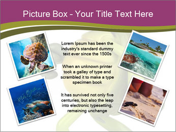 0000080922 PowerPoint Template - Slide 24