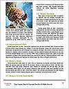 0000080922 Word Template - Page 4
