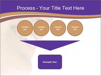 0000080923 PowerPoint Template - Slide 93