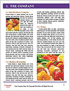 0000080929 Word Template - Page 3