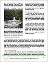0000080945 Word Template - Page 4