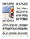 0000080947 Word Templates - Page 4