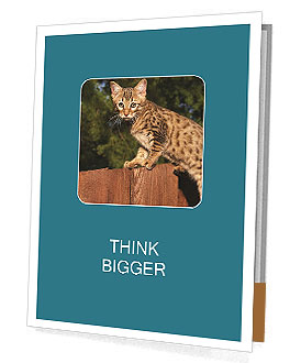 0000080951 Presentation Folder