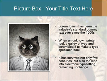 0000080951 PowerPoint Template - Slide 13