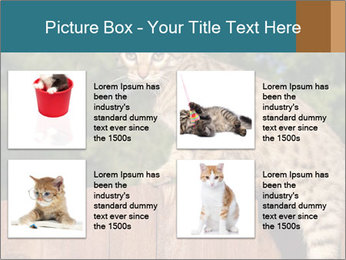 0000080951 PowerPoint Template - Slide 14