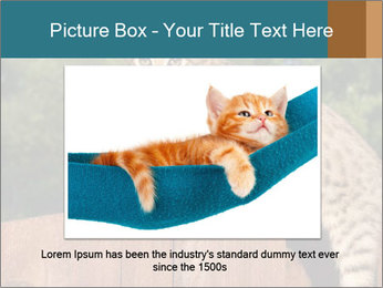 0000080951 PowerPoint Template - Slide 15