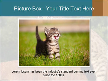 0000080951 PowerPoint Template - Slide 16