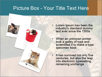 0000080951 PowerPoint Template - Slide 17