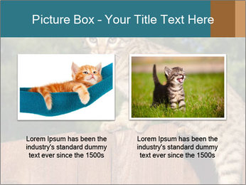 0000080951 PowerPoint Template - Slide 18