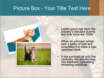 0000080951 PowerPoint Template - Slide 20