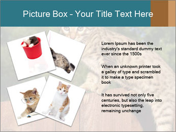 0000080951 PowerPoint Template - Slide 23