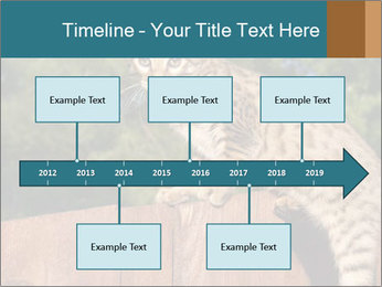 0000080951 PowerPoint Template - Slide 28