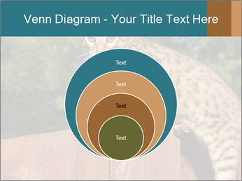 0000080951 PowerPoint Template - Slide 34