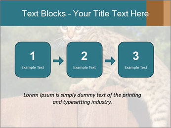 0000080951 PowerPoint Template - Slide 71