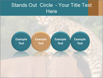 0000080951 PowerPoint Template - Slide 76