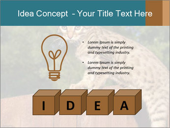 0000080951 PowerPoint Template - Slide 80