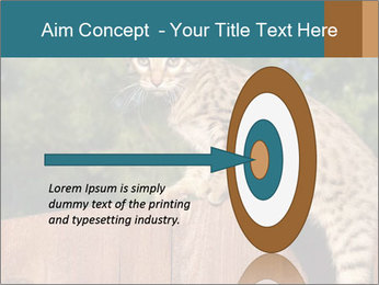 0000080951 PowerPoint Template - Slide 83
