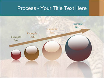 0000080951 PowerPoint Template - Slide 87