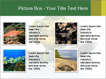 0000080954 PowerPoint Templates - Slide 14