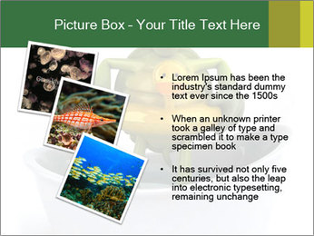 0000080954 PowerPoint Templates - Slide 17