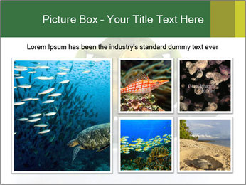 0000080954 PowerPoint Templates - Slide 19
