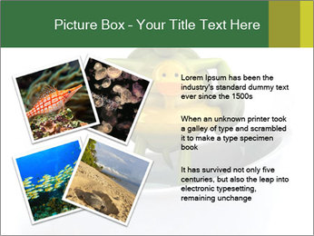 0000080954 PowerPoint Templates - Slide 23
