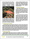 0000080954 Word Template - Page 4