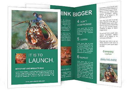 0000080955 Brochure Templates